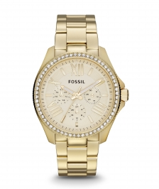 Fossil Cecile AM4482